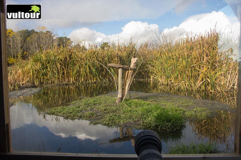 Lagoons Hide 11